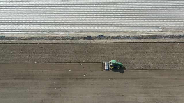 新疆沙雅190万亩棉花开种!无人驾驶播种机1天能种120亩地