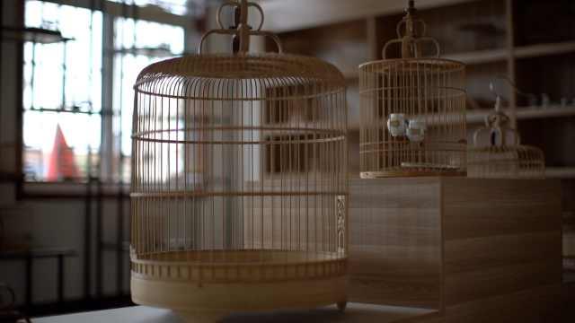 山东有个鸟笼村!技艺传承500年,最大鸟笼可达2米高