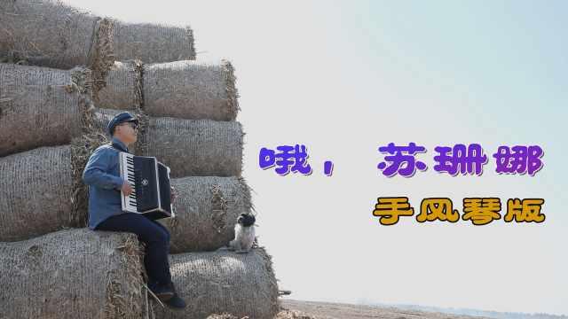欢快活泼的乡村音乐,跟手风琴很配哟!