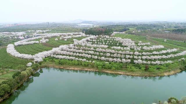 江西南昌:凤凰g景区