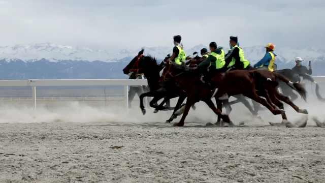 天赋!新疆16岁少年获赛马冠军,为自己赢了一辆轿车
