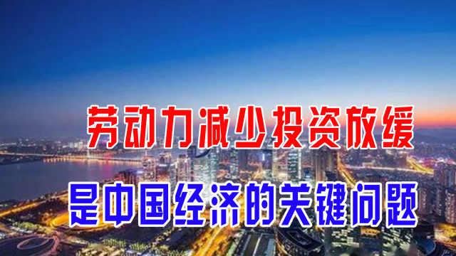 劳动力减少投资放缓,是中国经济的关键问题