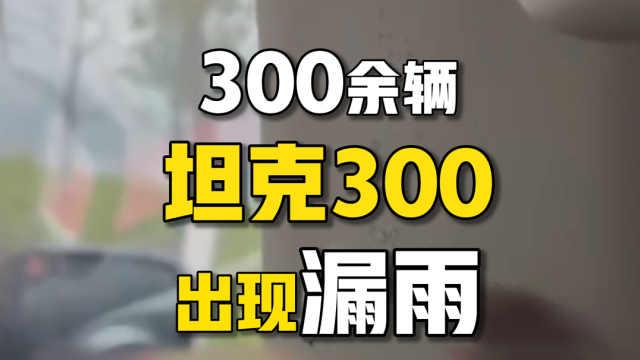 网红产品翻车?300余辆坦克300出现漏水!