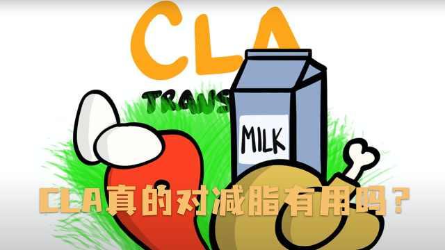 CLA真的对减脂有用吗?