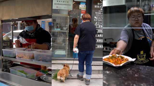 90后宠物美容师的一天:一天干3份工作,靠兼职养梦想
