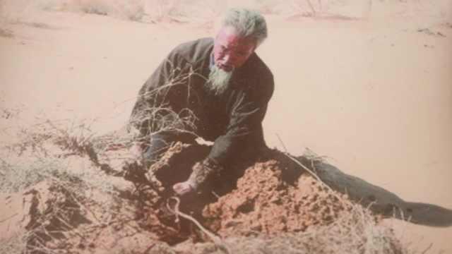 七旬翁20年投入上百万治沙:为省水用沙洗碗,种700万株苗木