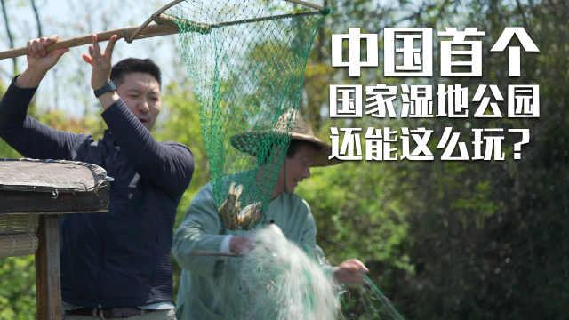 第三只眼看杭州 中国首个国家湿地公园还可以这么玩?