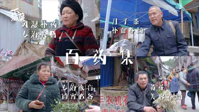 广西柳州融水县的市场简直就是个百草园