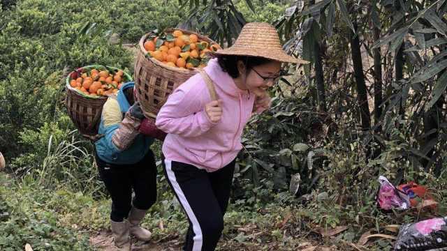 遇难扶贫书记黄文秀获七一勋章:曾带领418人脱贫