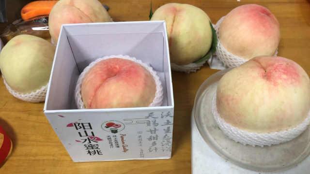 为什么阳山水蜜桃能卖128元1个?专家:单个1斤重,可遇不可求