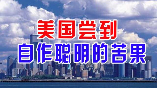 中国商品不可替代,美国尝到自作聪明的苦果