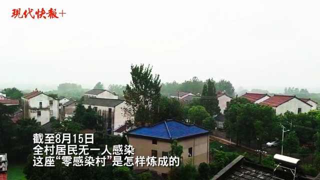 """南京""""零感染村"""":距禄口机场仅900米,49户有机场职工"""