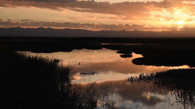 航拍12000公顷大小苏干湖草原湿地,像色彩斑斓的西部山水画