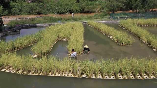 贵州山村农民种