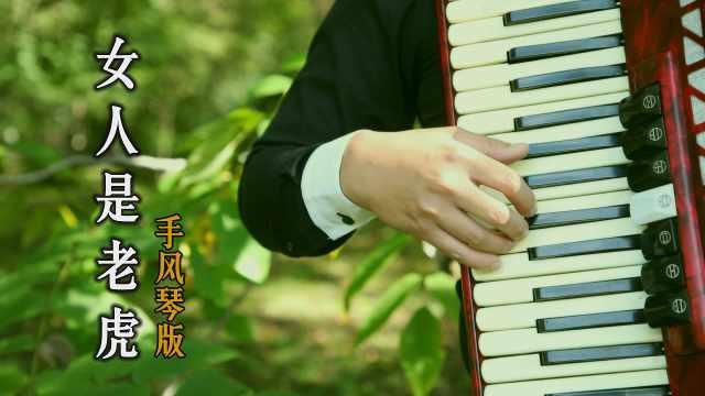 《女人是老虎》手风琴版,清脆悦耳很好听!
