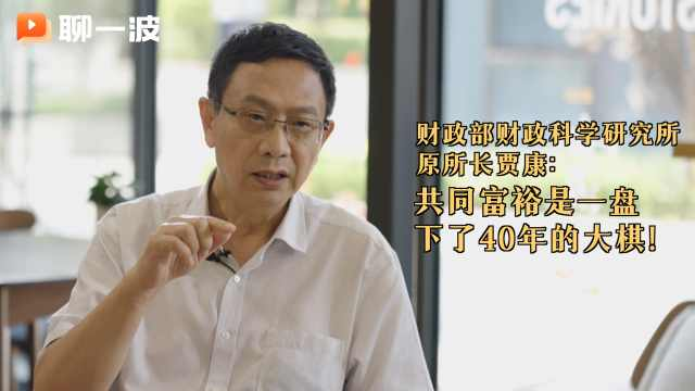 国家财政科学研究所贾康:共同富裕是一盘下了40年的大棋