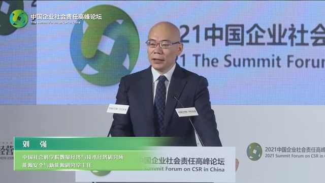 刘强:未来双碳目标中国能源图景,需要各个领域之间相互配合