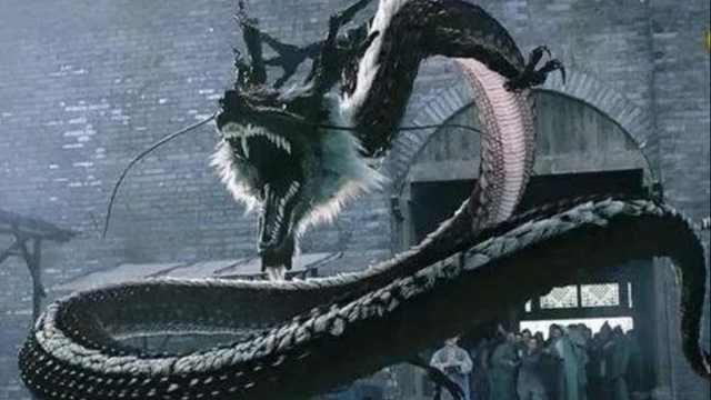 茅山曾经发现过一条龙?是真的吗?专家揭秘茅山龙之谜