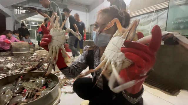 海鲜节遇上国庆!实拍丹东通宵分拣梭子蟹,水产工分享选蟹诀窍