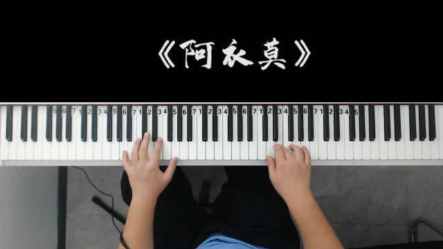 最近很火的《阿衣莫》旋律太好听了,令人着迷!