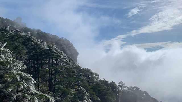 黄山景区两季美景同现!一边今秋首次雾凇,一边云海缭绕如仙境