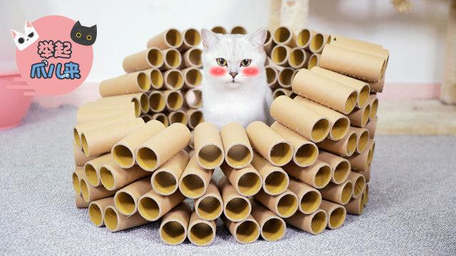 DIY猫咪纸筒玩具!