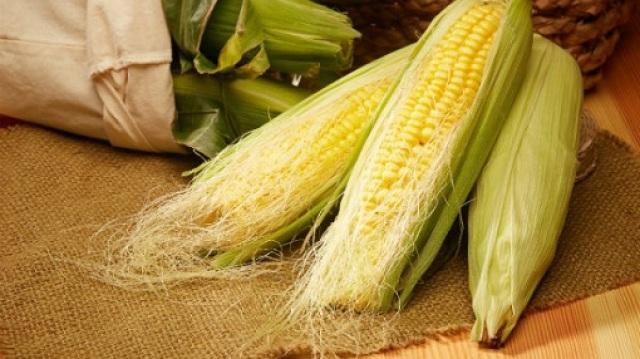 玉米须有奇效,这样吃可以防肾病