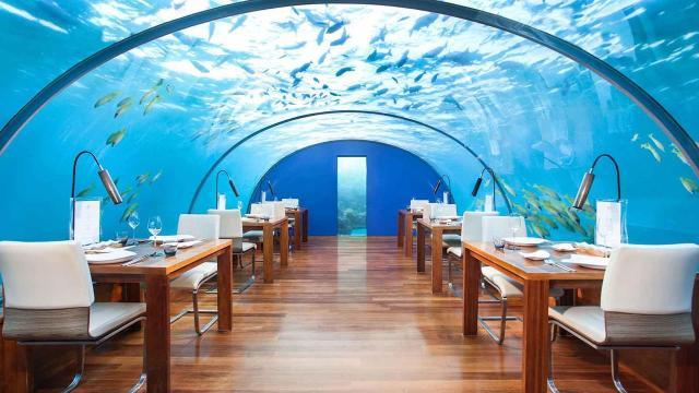 全球首家海底餐厅,与鲨鱼共享晚餐