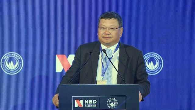 长江商学院创办院长项兵谈全球化