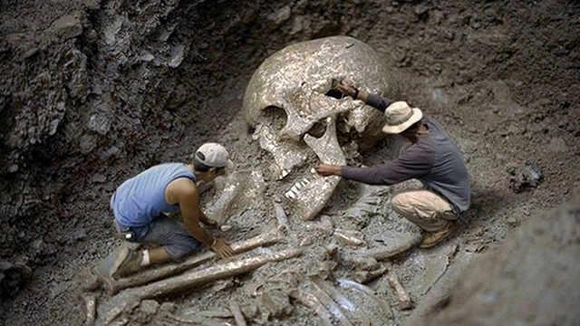 地球存在46亿年出现了多少代人类?