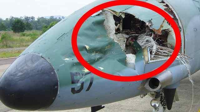 钢铁做的飞机为什么会害怕小鸟?