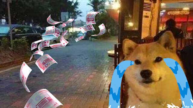 单身狗危机来袭要交税?