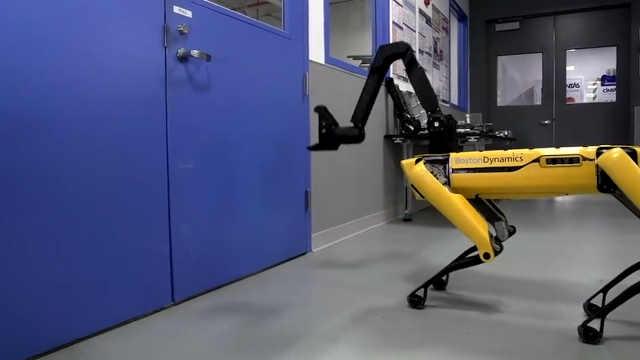 波士顿动力的机器人会帮同伴开门