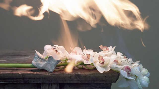 用鲜花与烈火,为亡妻写了4年情书