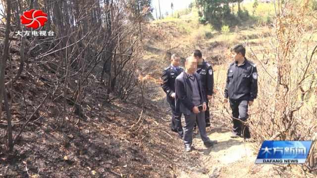 大方县对江镇依法处置引发山火人员