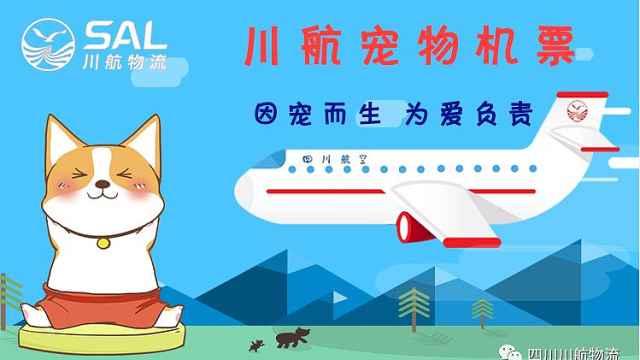 """川航3月28日正式上线""""宠物机票"""""""