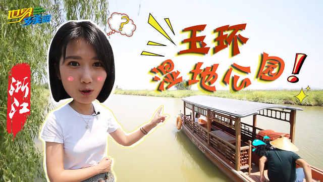 万鸟迁飞的终点站,浙江玉环湿地