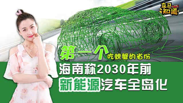 2030年前海南全岛使用新能源汽车