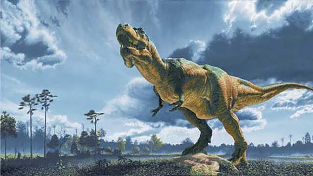 为什么先统治地球的不是人类是恐龙