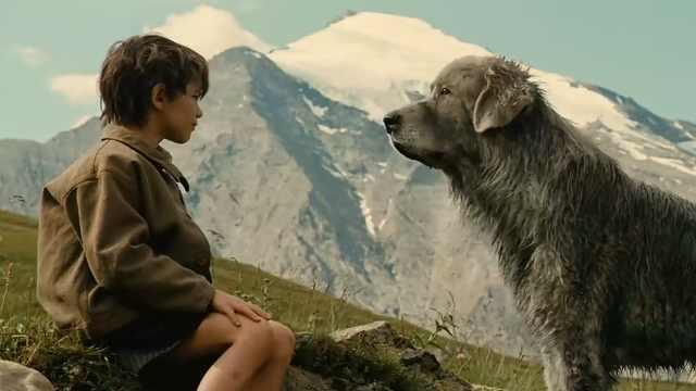 """小男孩遇到""""猛兽"""",结果是只萌犬"""