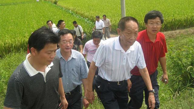 为什么袁隆平落选中科院院士评选?