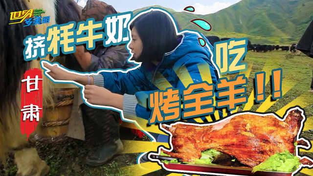 暑假攻略丨来甘南藏区挤牦牛奶!