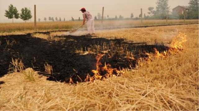 为什么国家现在不准农民烧秸秆了?