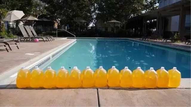 一个游泳池里到底有多少尿液?