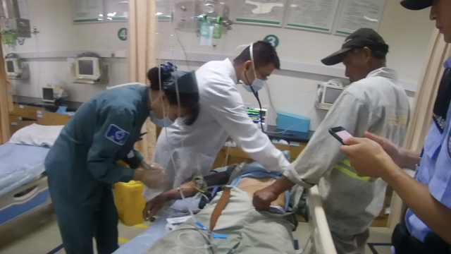 园林工被马蜂蜇,送医抢救差点没命