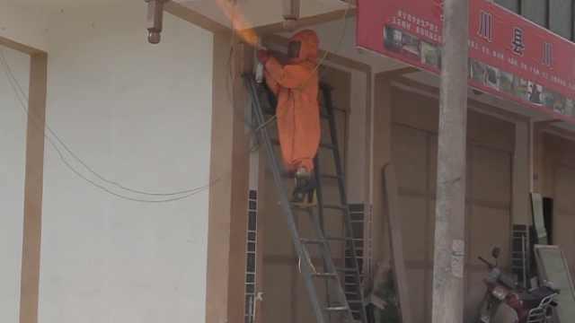 马蜂檐下筑巢蜇伤3人,被消防