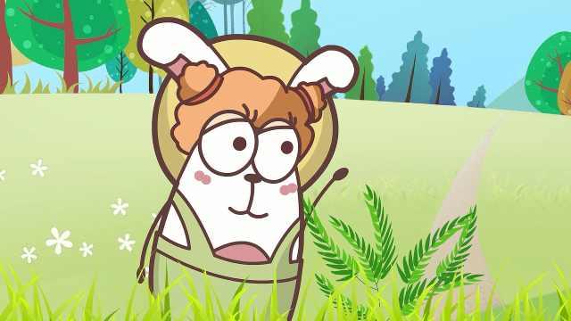 含羞草为什么会害羞?