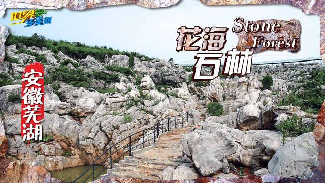 花海石林迷宫,丫山观赏喀斯特地貌