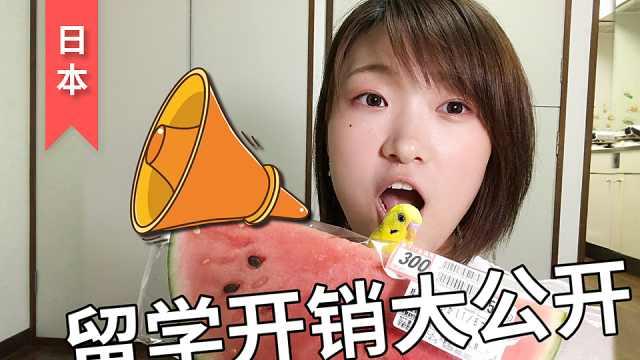 西瓜比肉贵,日本留学每月花多少?