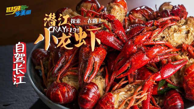 潜江全虾宴,虾黄诱人,深夜勿戳!